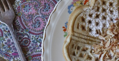 Deliciosos y Saludables Waffles / Healthy and Delicious Waffles Recipe